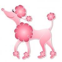 Pink Poodle Grooming