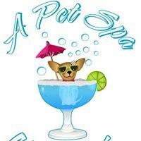 A Pet Spa Grooming