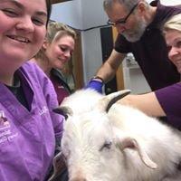 Kalona Veterinary Clinic, P.C.