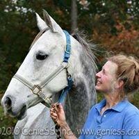 Evergreen Equine of Vermont