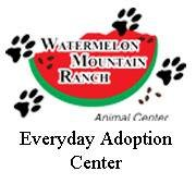 Watermelon Ranch Everyday Adoption Center