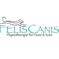 Felis Canis