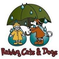 Raining Cats & Dogs Racine