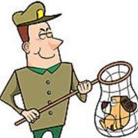 Lanesborough Animal Control