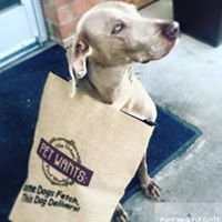 Pet Wants Charlotte: The Urban Feed Store