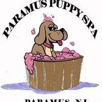 Paramus Puppy Spa (Dog Grooming)