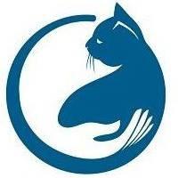 Lenox Cat Hospital