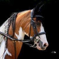 French Lake Equestrian