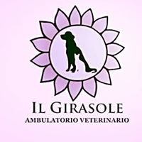 "Ambulatorio Veterinario ""Il Girasole"""