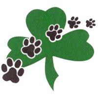 Shamrock Veterinary Clinic Ltd.