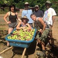 Turning Earth Farms