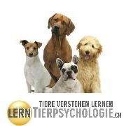 lernTierpsychologie.ch