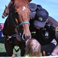 Lapeer County Sheriff's Mounted Unit