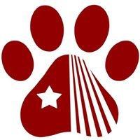 SBU Cat Network
