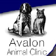 Avalon Animal Clinic