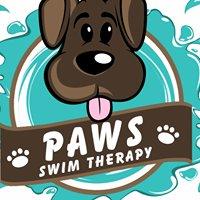 Paws Swim Therapy