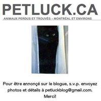Petluck.ca