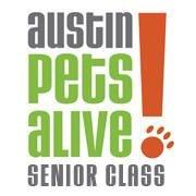 APA Senior Class Dogs