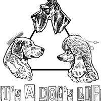 It's a Dog's Life, LLC.