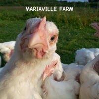 Mariaville Farm