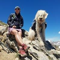 Misha's Pets & Self Dog Wash of Lake Charles