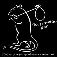 The Travelin' Rat