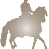 Gaited Horsemanship