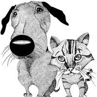 Village Veterinary Practice