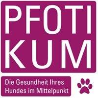 Pfotikum, Praxis für Hundegesundheit in Bamberg