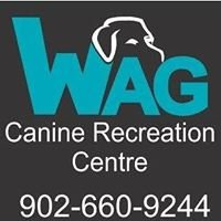Wag Canine Recreation Centre