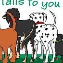 Happy Tails K-9 Training & Agility Center