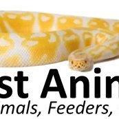 A-List Animals