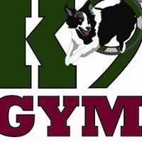 K9 Gym and Rehabilitation Center