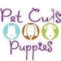 Pet Cuts & Puppies