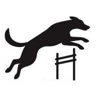 Dog Agility Ontario