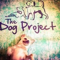 The Dog Project