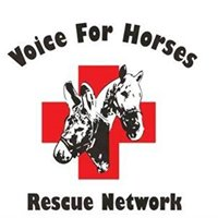 Voice For Horses Rescue Network