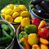 Stevens Vegetables
