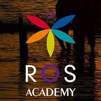 ROS academy