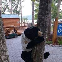 Honeycomb Campground