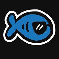 BluFish Consulting