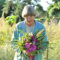 Aunt Willie's Wildflowers