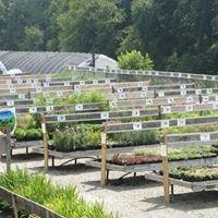Groff's Plant Farm