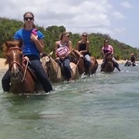 Colon Horse Riding at Vieques island