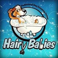 HairyBabies Dog Grooming