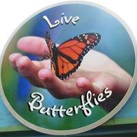 Bear Mountain Butterfly Sanctuary