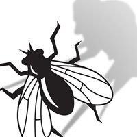 Buffalobarfly
