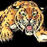 Chisago Lakes HS Wildcats Activities