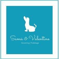 Toilettage à Terrebonne - Samü & Valentine