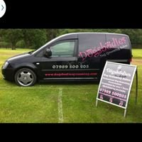 Dogsbodies Dog Grooming